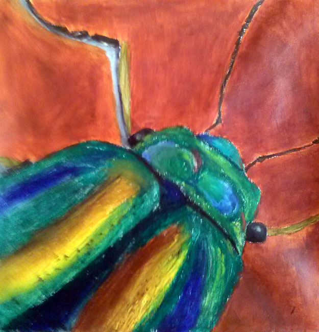 Saturday 11.00am-1.00pm Drawing and Painting with Cate: Ages 11-Adult( Cate)